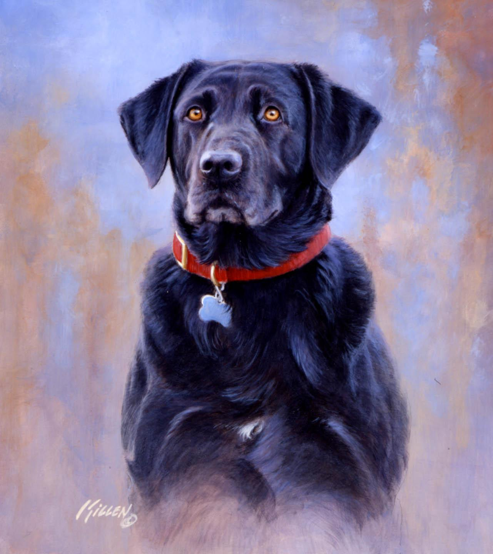 Sporting Dogs Retrievers Jim Killen