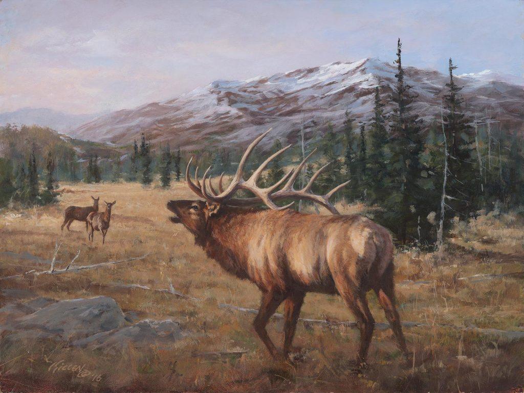 Big Game Paintings By Jim Killen Jim Killen