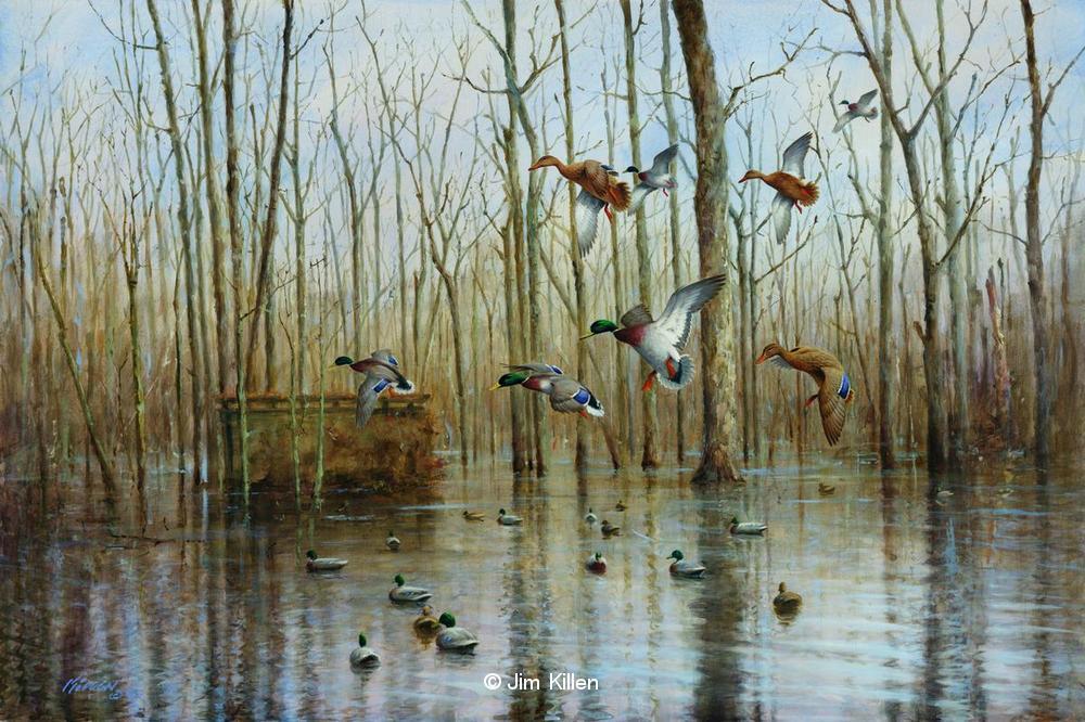 Mallard Duck Painting For Sale